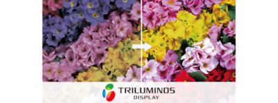 Logo für TRILUMINOS Colour